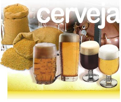 cerveja Curiosidades: estudo afirma que cerveja faz bem e até previne diabetes!
