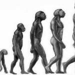 darwin man 150x150 Bizarro: descoberto francês de 44 anos que não tem cérebro!
