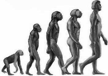 darwin man 7 mentiras que aprendemos na escola e repetimos até hoje!