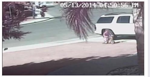 video cachorro ataca garoto Video: gato salva menino de ataque de cachorro nos eua!