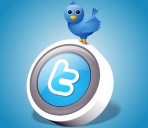 twitter 300x259 Cientista diz que usar o Facebook e o Twitter pode fazer cérebro regredir!