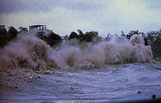 Curiosidades: conheça o surfista que já surfou uma tsunami!