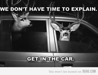 entre no carro
