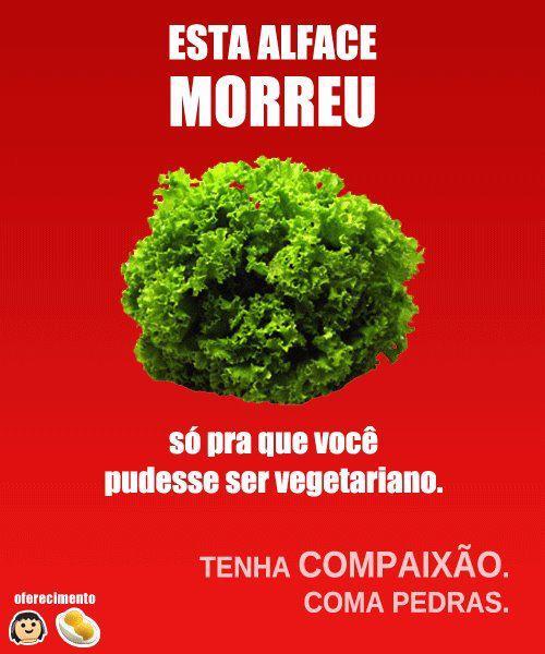 vegetarianos gays Aviso aos vegetarianos: tenham mais consciência...
