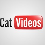 Os 5 vídeos de gatos mais famosos do YouTube!